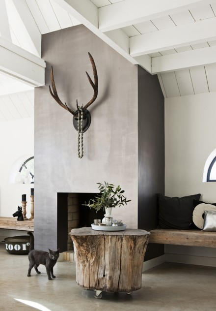 deer antler on wall design