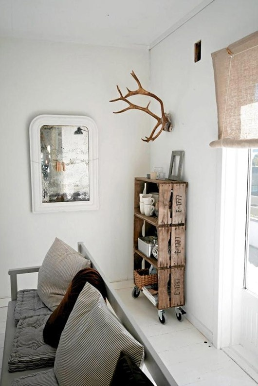 antler on wall design