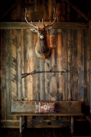 Antlers on wall interior design