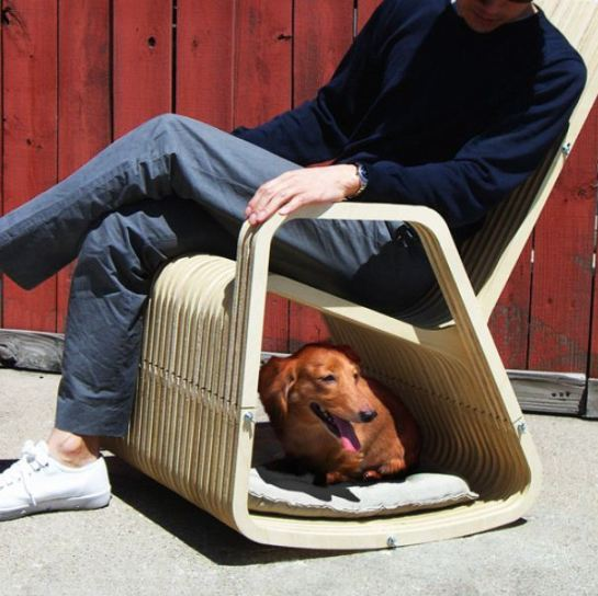 designer dog chair